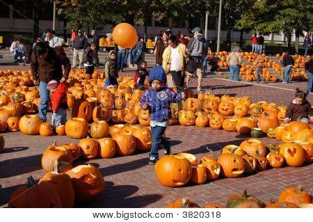 Camp Sunshine Pumpkin Festival In Boston