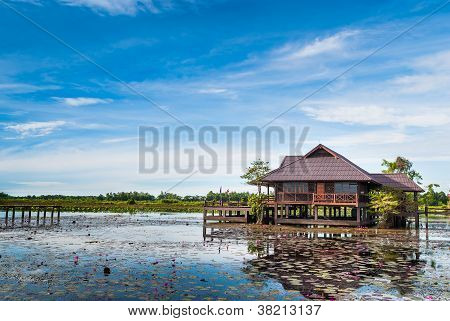 View Of  Wooden Home Countryside In Lotus Lake