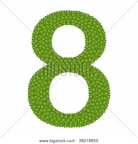 Four Leaf Clover Of Alphabet Numbers 8