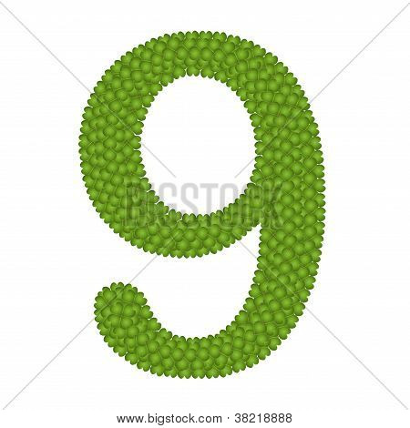 Four Leaf Clover Of Alphabet Numbers 9
