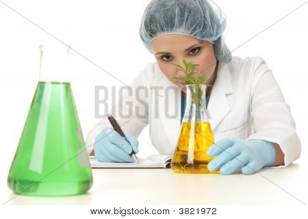 Scientist Botanist Studying Plant
