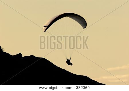 Gliding In The Twilight