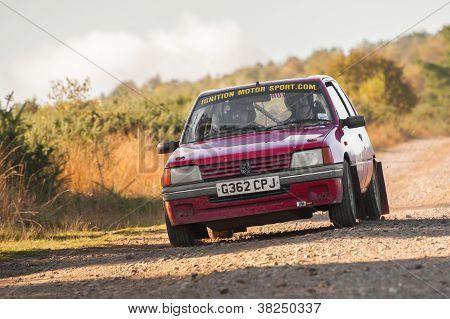 Peugeot Rally Car
