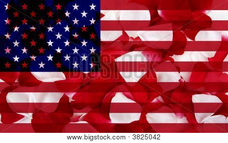 American Flag With Petal Texture