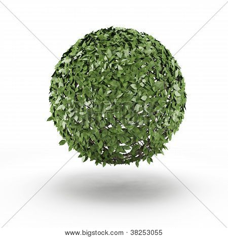 Sphere from green leaf