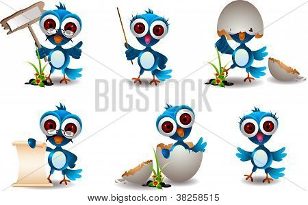 cute blue bird family cartoon set