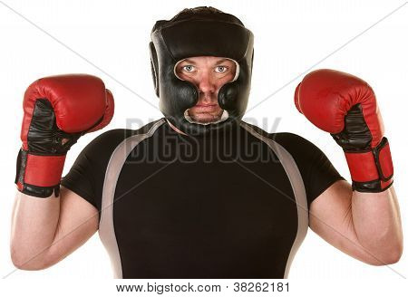 Muscular Boxer With Gloves