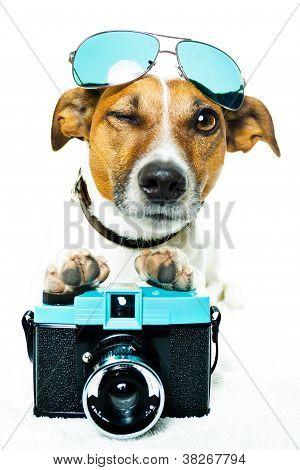 Câmera de foto de cão