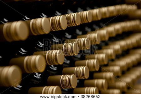 Wine Bottles Winery