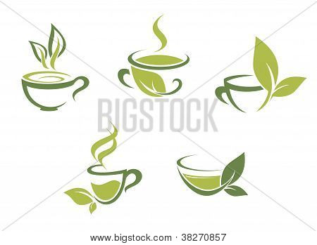 Fresh Tea And Green Leaves