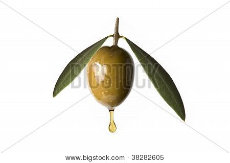 Green Olive With A Drop Of Oil Falling.