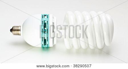 Fluorescent Light Bulb