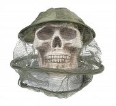 image of bee keeping  - Skull wearing bee keeper hat keeps bees and other bugs out of the person - JPG