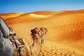stock photo of dromedaries  - Landscape with people in the Sahara desert - JPG