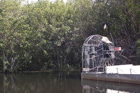 picture of airboat  - An air boat in the Everglades National Park - JPG