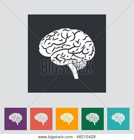 Vector illustration of a human brain.
