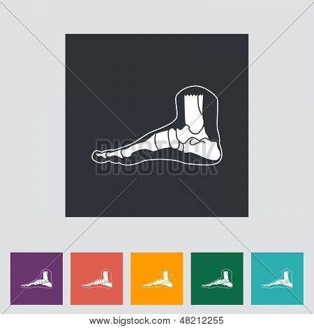 Foot Anatomy Icon.