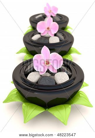 Spa Stones With Flowers And Leaves. 3D Concept