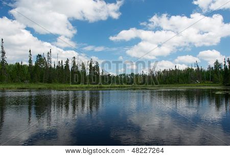 Lake, Clouds and Trees