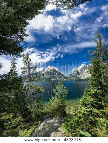 Summer Day On Jenny Lake