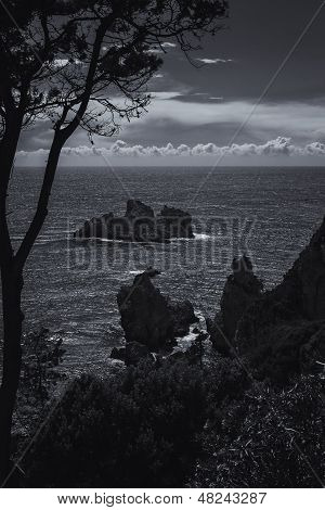 Coastline on the island of Corfu, Greece, in black and white