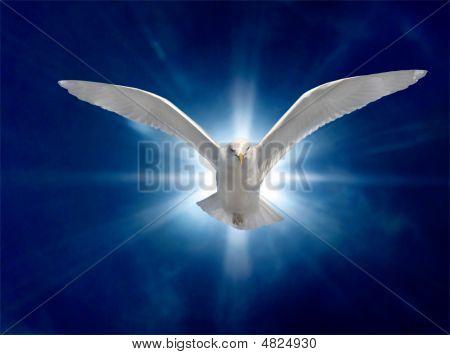 Heiligen Geist 2