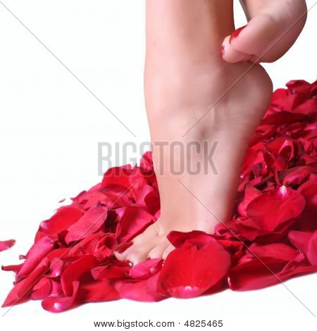 Feet And Rose-petals