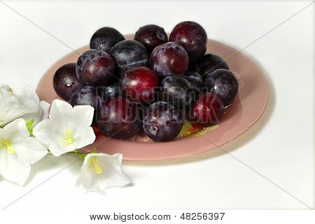 Ripe plum and white delicate flowers