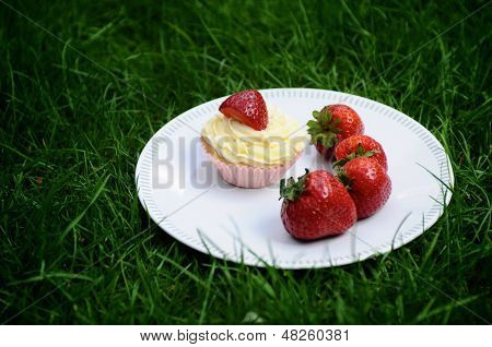 Strawberry And Vanilla Cupcakes On Grass