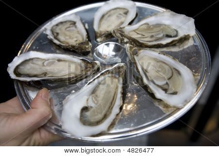 Oyster On Plate