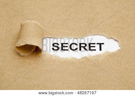 Concepto de secreto