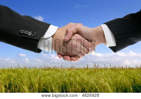 Businessman Partners Shaking Hands In Nature