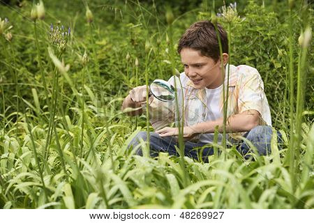 Young boy examining plants with a magnifying glass in forest