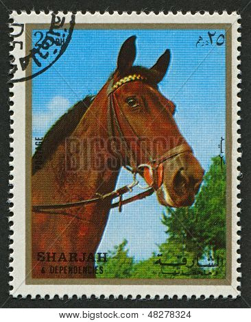 EMIRATE OF SHARJAH - CIRCA 1972: A stamp printed in Emirate of Sharjah shows image of The horse (Equus ferus caballus) is one of two extant subspecies of Equus ferus, or the wild horse, circa 1972 .