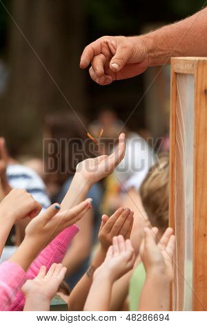 Youthful Hands Reach For A Butterfly Being Released
