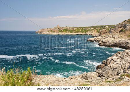 Coastine landscape in Salento, Apulia. Italy