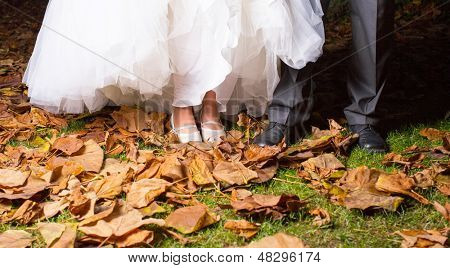 Close-up Of Bride And Groom's Leg In Park Surrounded With Dry Leaf