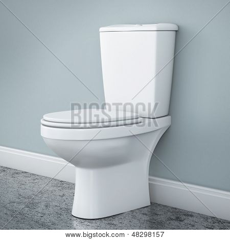 New toilet bowl