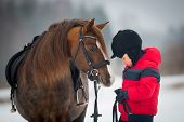 stock photo of breed horse  - Horse and Jockey  - JPG