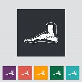 stock photo of flat-foot  - Foot anatomy flat icon - JPG