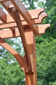 stock photo of pergola  - Close - JPG