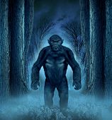stock photo of bigfoot  - Forest monster concept with a werewolf lurking as a bigfoot creature coming out of a dark scary background with a moon glow behind it as a halloween horror symbol of haunted woods animal - JPG