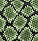 stock photo of green snake  - Green seamless snake skin pattern for background design - JPG