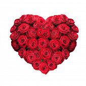 picture of bunch roses  - red rose heart isolated on white - JPG