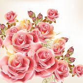 picture of rose  - Vector cute pink roses in vintage style for design - JPG