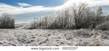 Panoramic Photo Of Spectacular Winter Landscape