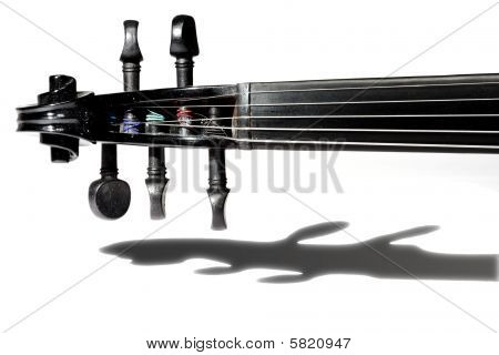 5-string Black Violin