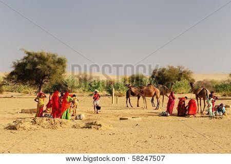 Desert Life In India