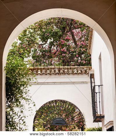 White Horseshoe Arches Pink Flowers Alcazar Royal Palace Seville Spain