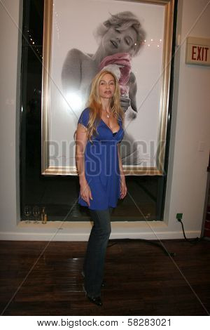 Christina Fulton at the reception for the launch of The Playboy Legacy Collection. Celebrity Vault, Beverly Hills, CA. 07-19-07